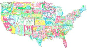 Lilly Pulitzer United States Of America Map Of Prints Stickers By - Flat us map