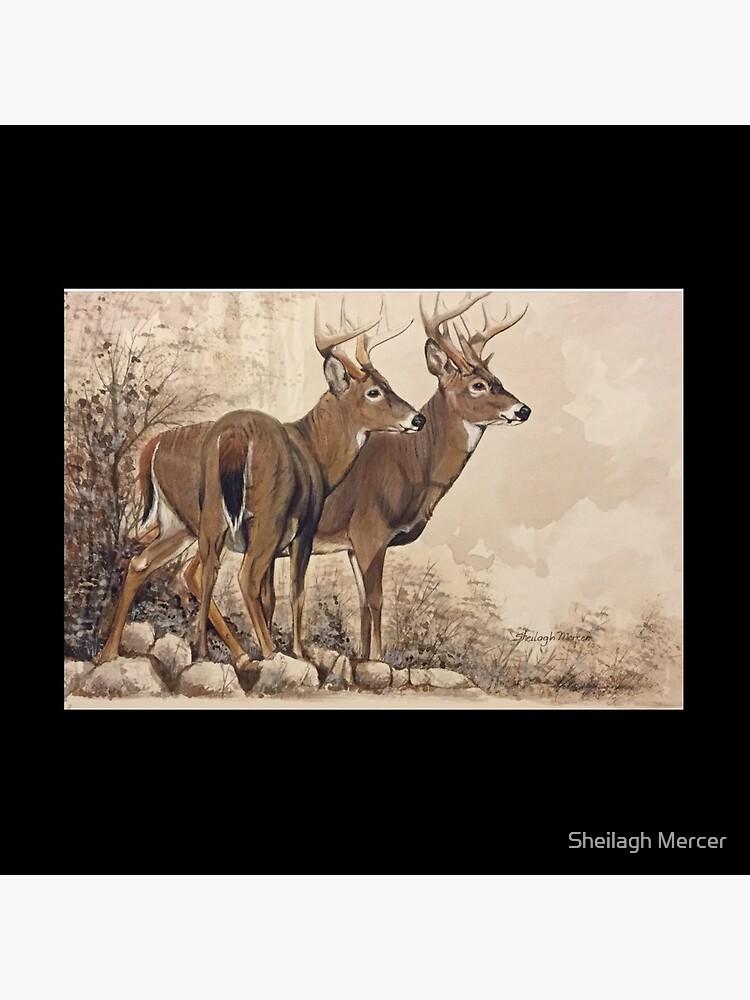 Fall Bucks  by SpiritArt777
