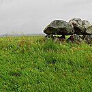 Neolithic in Denmark by hans p olsen