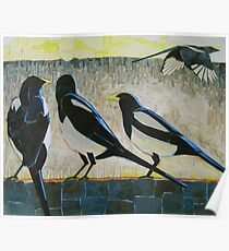 """Morning magpies"" Poster"