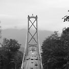 Lions Gate Bridge  by Julie Masters