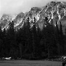 Montana Rockies by Rodney Johnson