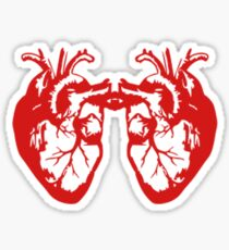 Binary Vascular System - Time Lord Sticker