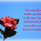 Broken Heart by DebbieCHayes