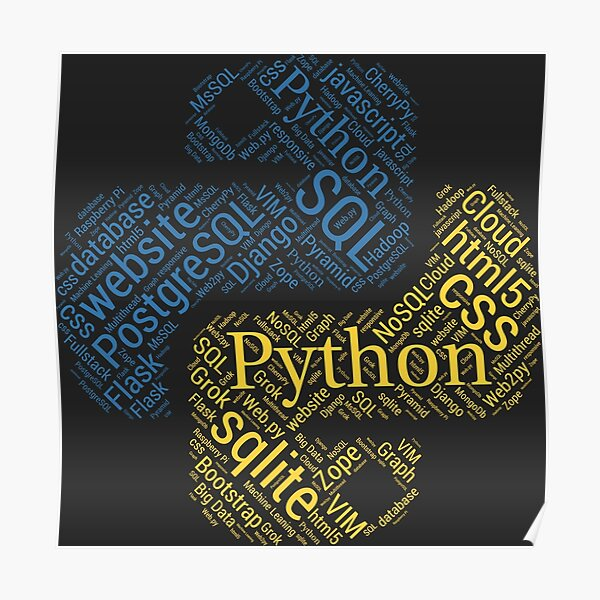 Python Programmer & Developer T-shirt & Hoodie NEW Poster