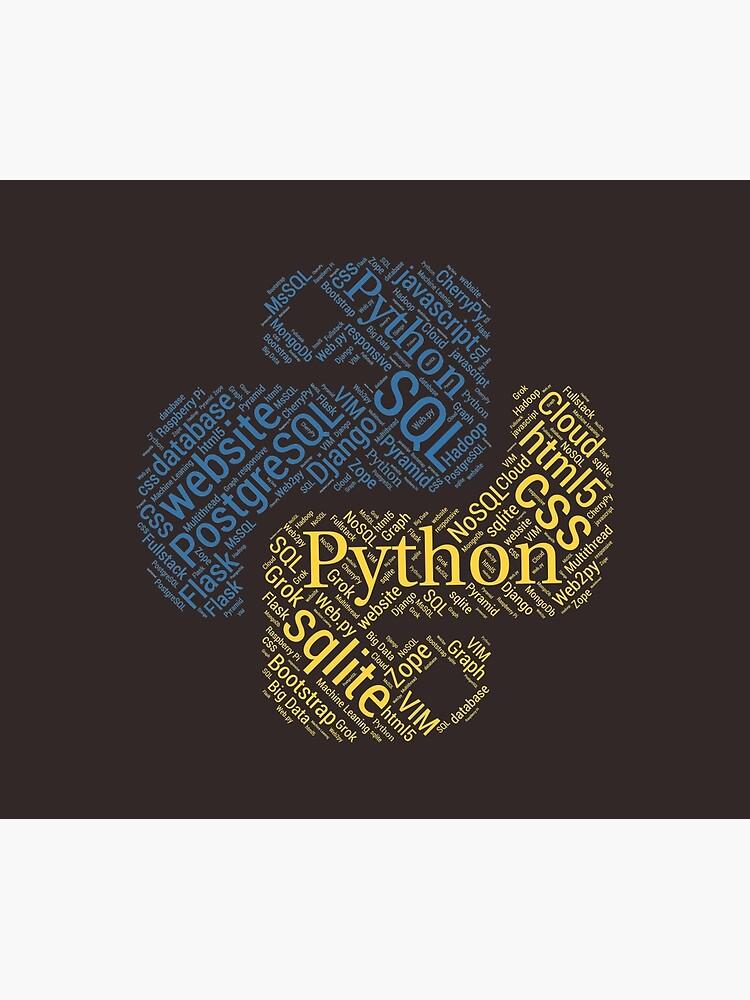 Python Programmer & Developer T-shirt & Hoodie NEW by nasa8x