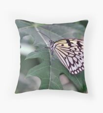 Paper Kite, Rice Paper, or Large Tree Nymph Butterfly  	 Throw Pillow