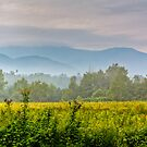 Cades Cove (HDR) by Douglas  Stucky