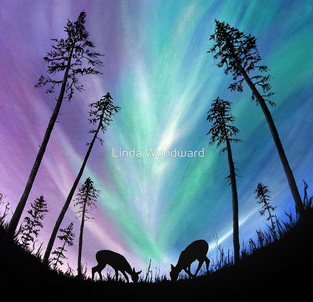 Deer grazing over Northern Lights by Linda Woodward