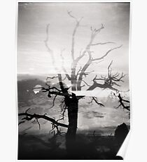 Arches National Park Holga Double Exposure Photo Poster