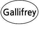 Gallifrey Euro  by ginamitch