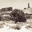 Holga Photo of Castle Valley, Utah In Winter  by strayfoto