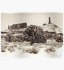 Holga Photo of Castle Valley, Utah In Winter  Poster