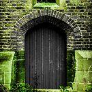 Magical Door by FelipeLodi