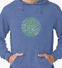 Another Green World Sweatshirts Hoodies Redbubble