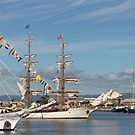 Lovely old ships in the Port by sharon wingard