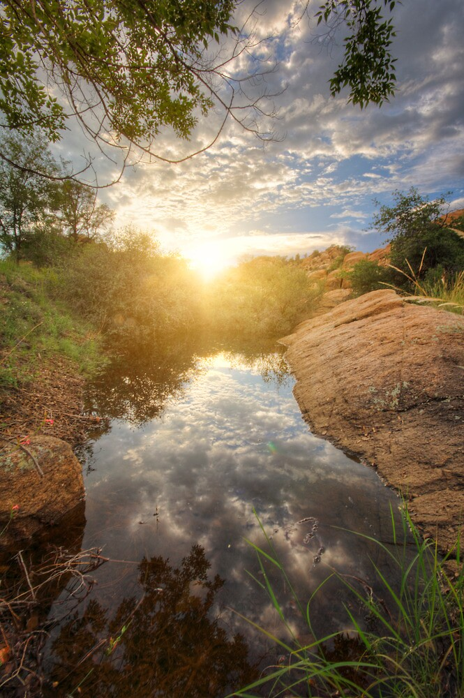 Liquid Peace by Bob Larson
