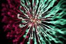 fireworks 8/12/15 by david gilliver