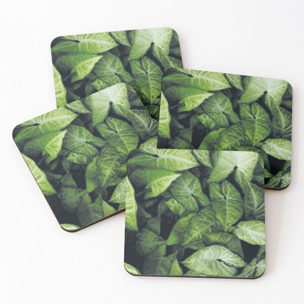 Green leaves Coasters (Set of 4)
