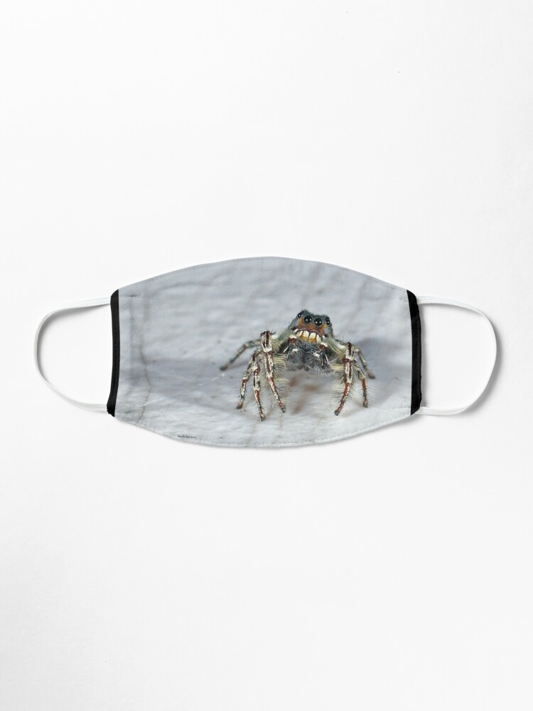 Alternate view of Cute Jumping Spider Checking Things Out Mask