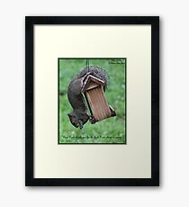 Photography/Digital Art - Praying Squirrel - Color Framed Print