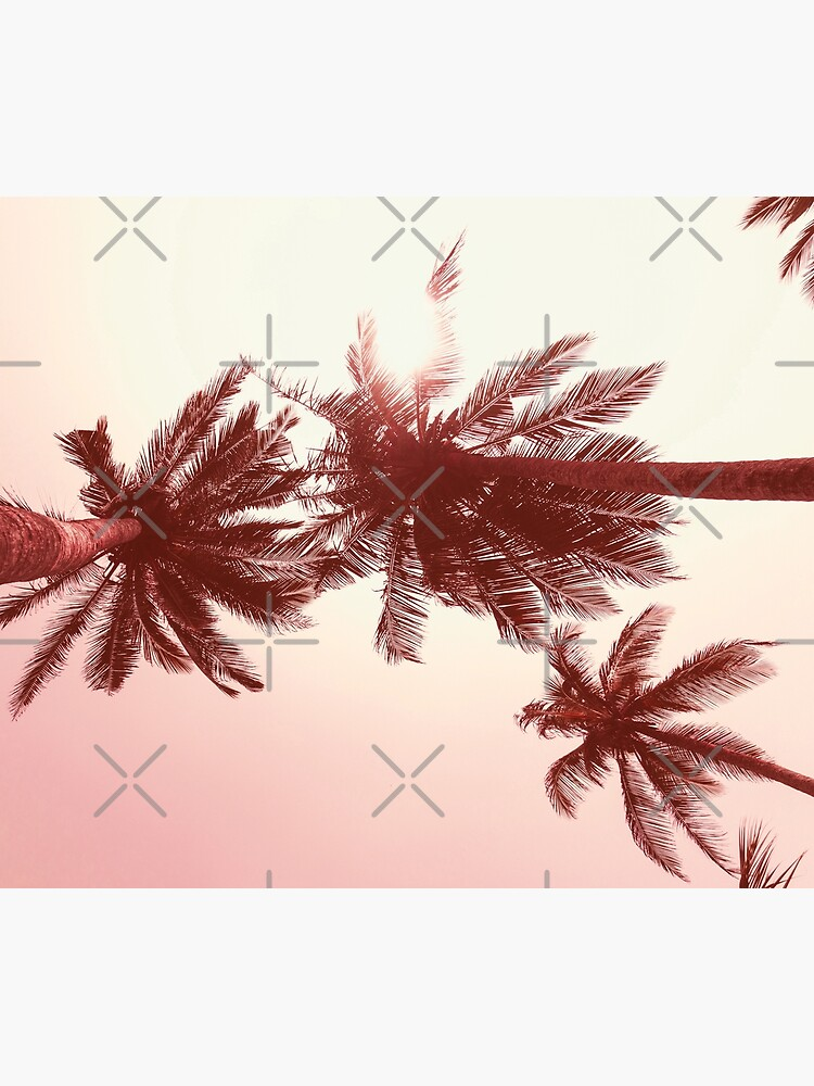 Palmtree pink by ColorsHappiness