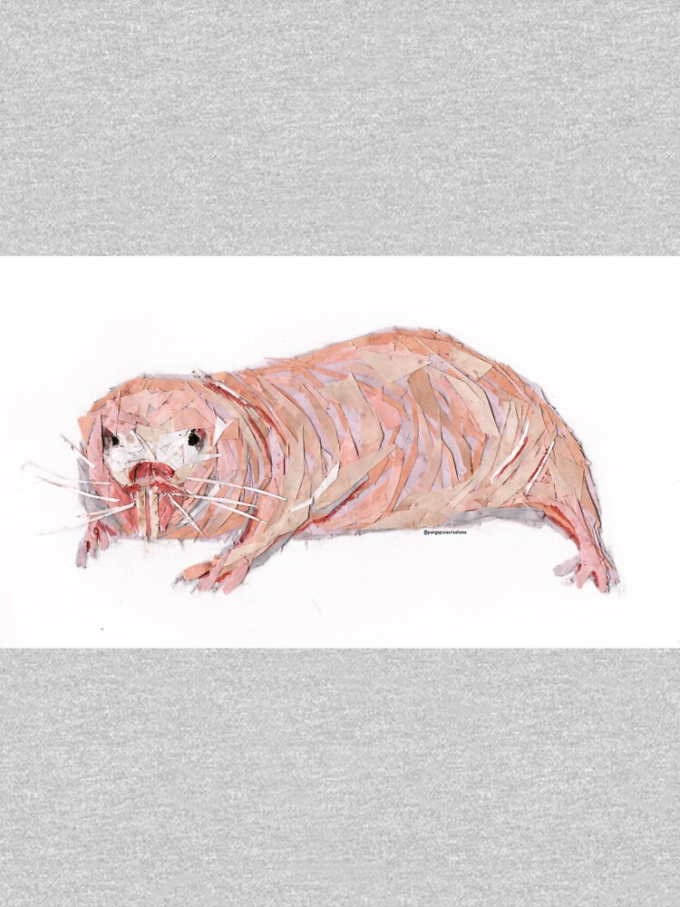 Why do naked mole rats live long, cancer-free lives