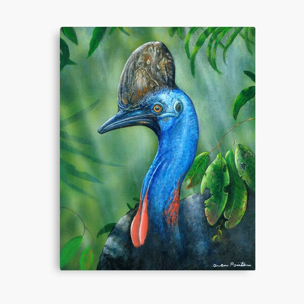 Sothern Cassowary ( endangered Species ) Canvas Print