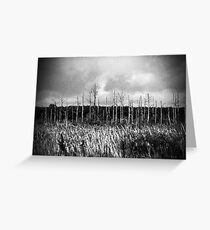Land of the dead Greeting Card