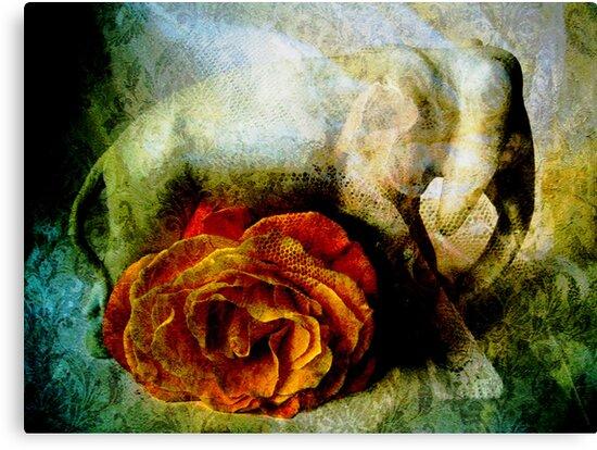 Lucky Elephant & Gentle Rose by Vitta