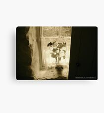 Window on the Past, Cultra, County Down. Canvas Print