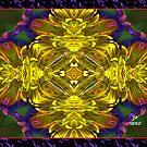 SPLENDIDA by BuddhaKat