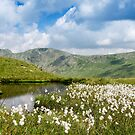 Cotton Tarn, Lake District National Park by strangelight