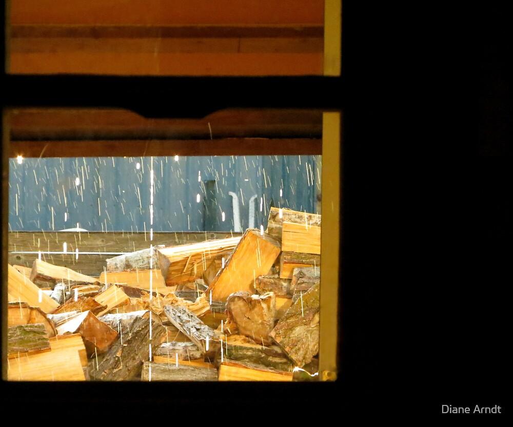 Rain Through The Back Door Window by Diane Arndt