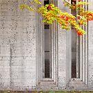 Scarpa. Brion Cemetery by Robert Dettman