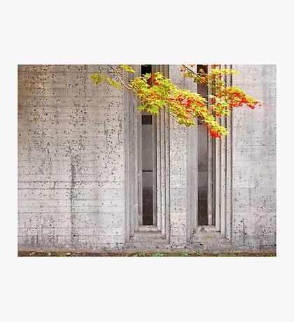 Scarpa. Brion Cemetery Photographic Print