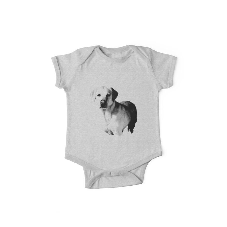 «Labrador Retriever Dog Engraving» de digitaleclectic