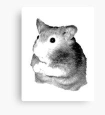Golden Hamster Digital Image and Engraving Canvas Print