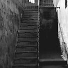 Stairs, Roma by pmreed