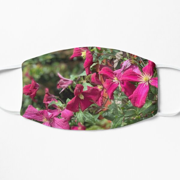 Clematis Mask