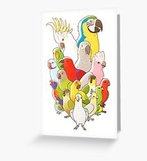 Parrot Party Greeting Card