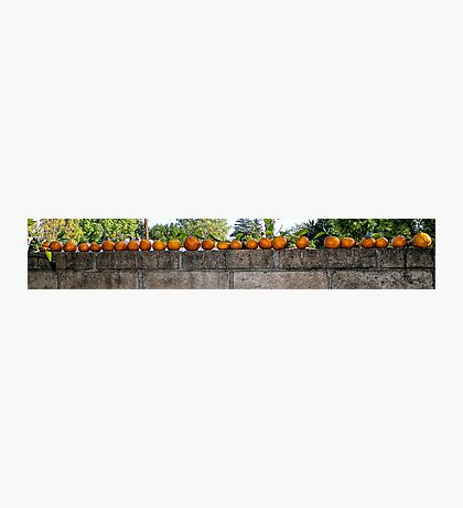 WALL OF TANGERINES 2 Photographic Print