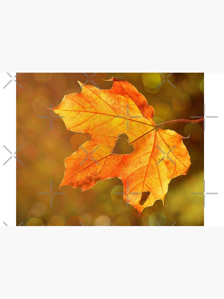Autumn maple leaf with heart Jigsaw Puzzle
