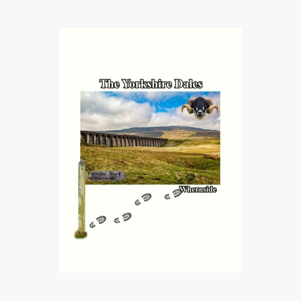 Pennine Way and Whernside Art Print
