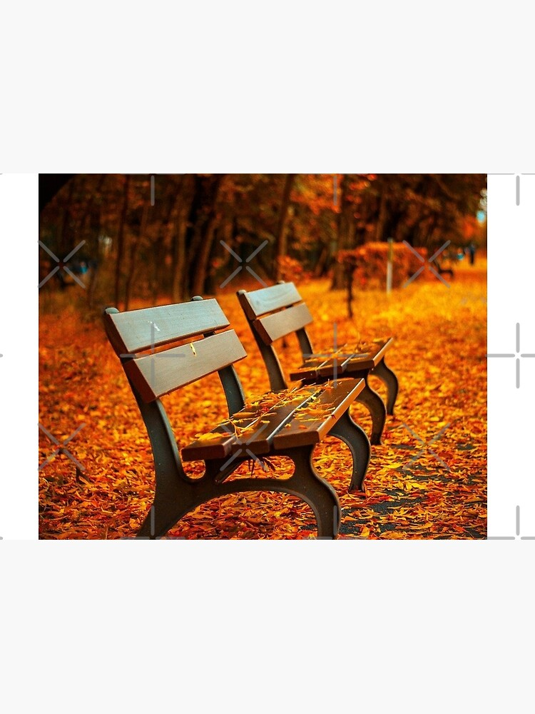 Two benches in autumn  Jigsaw Puzzle