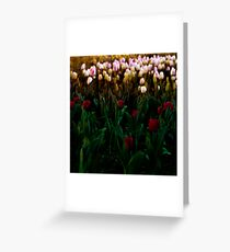 Bloomin' lovely Greeting Card