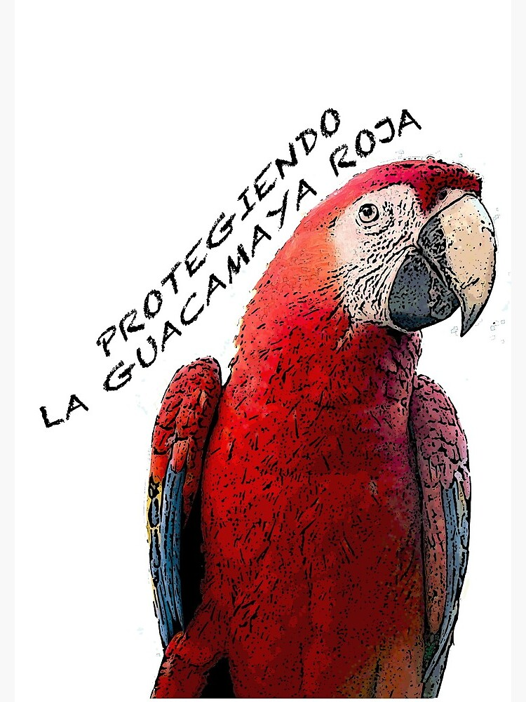 Protect the scarlet macaw by ARCASrescate