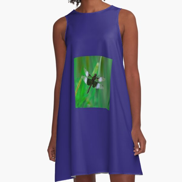 Dragonflies of dreams  By Yannis Lobaina A-Line Dress