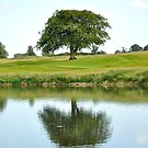 Peaceful Tree by Orla Cahill Photography