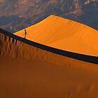 Long Way in Dunes by Alla Gill